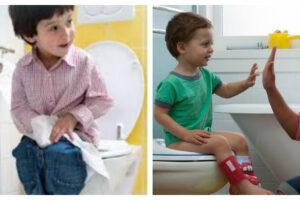 Los 10 mejores reductores para WC